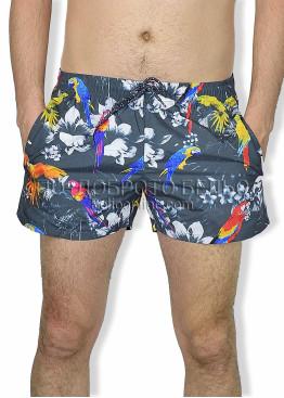 Мъжки шорти за плаж Lord 6150 графит